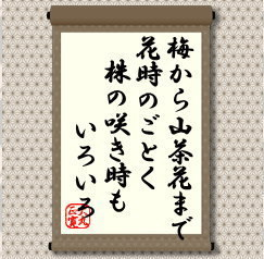 saki11.jpg